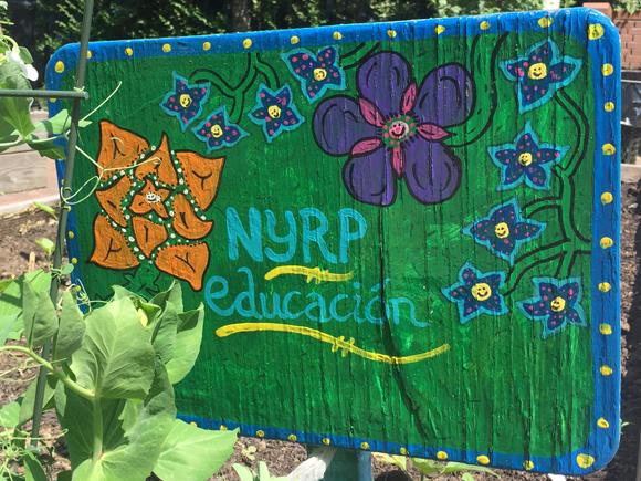 An NYRP Garden is a Happy Garden